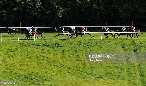 Runners make their way through the course during the PP Business improvements supports Paul's place handicap hurdle race at Chepstow Racecourse on...