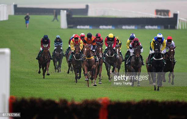 Runners make their way through the field during the Frank Sutton Supporting Velindre National Hunt Maiden Hurdle Race at Chepstow Racecourse on...