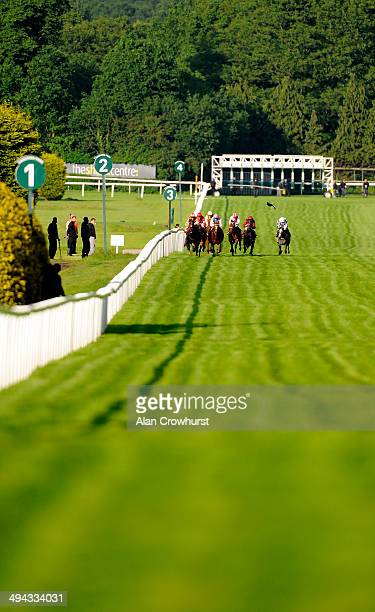 Runners make their way up the five furlong course in The Cantor Fitzgerald Equities National Stakes at Sandown racecourse on May 29 2014 in Esher...