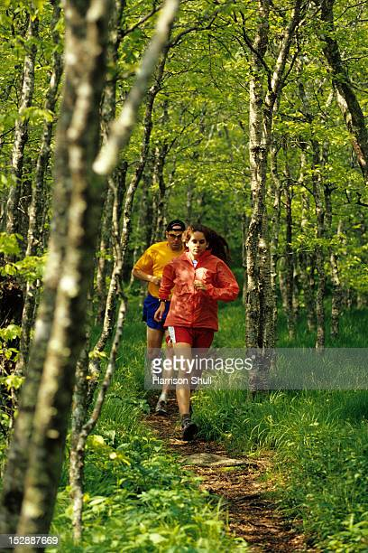 Runners out for a trail run in a lush grove of birch trees along the Mountains To Sea Trail atop Bullhead Mountain north of Asheville, NC