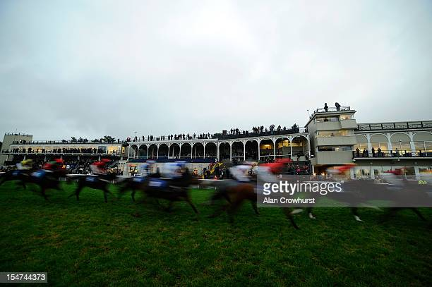Runners pass the grandstand in The AIUA/Bluefin Agricultural Insurance Specialists Handicap Hurdle Race at Ludlow racecourse on October 25 2012 in...