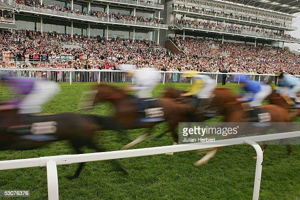 Runners pass the stands for the first time during The Gold Cup Race run at York Racecourse on June 16, 2005 at York, England. Today was the third day...