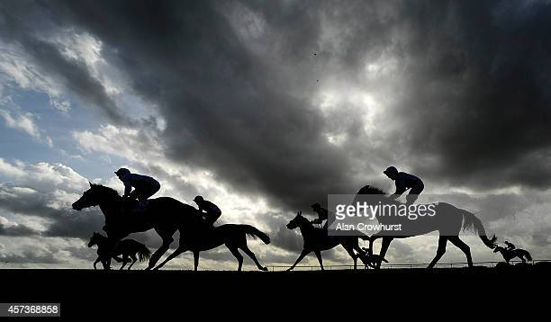 Runners pull up after finishing The Dubai European Breeders' Fund Fillies' Nursery Handicap Stakes at Newmarket racecourse on October 17 2014 in...