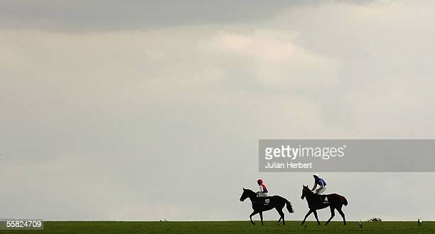 Runners pull up after The Sky Bet Cheveley Park Stakes Race run at Newmarket Racecourse on September 29, 2005 in Newmarket, England.