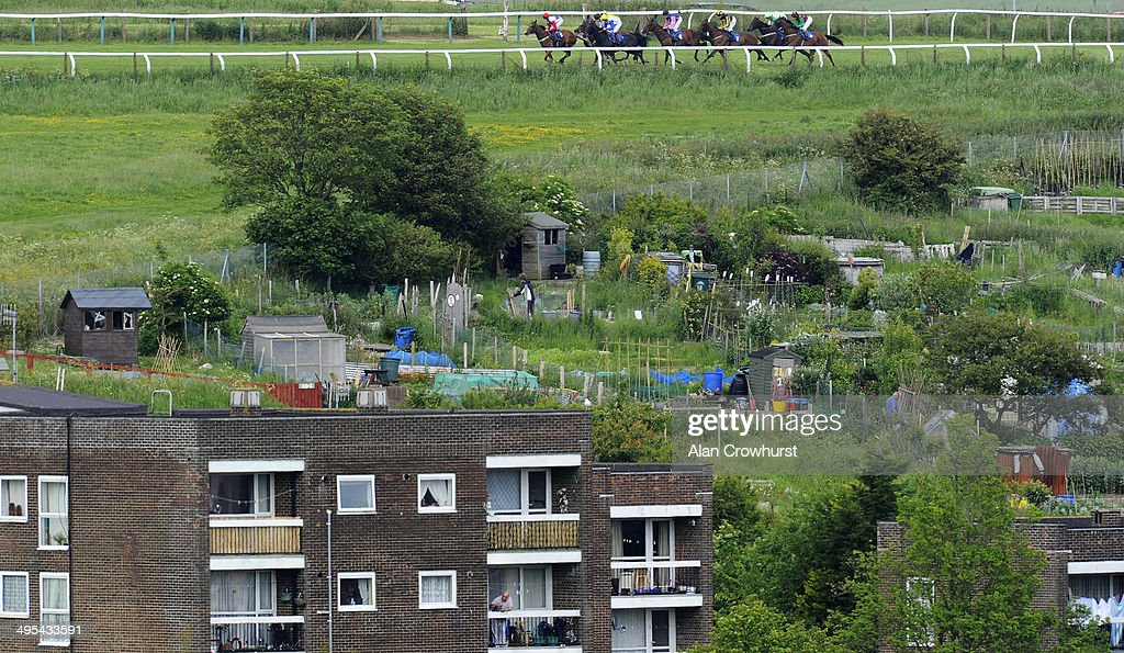 Brighton Races : News Photo