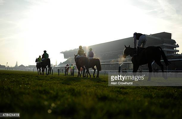 Runners return after being pulled up in The Fulke Walwyn Kim Muir Challenge Cup Handicap Steeple Chase on St Patrick's Thursday during the Cheltenham...