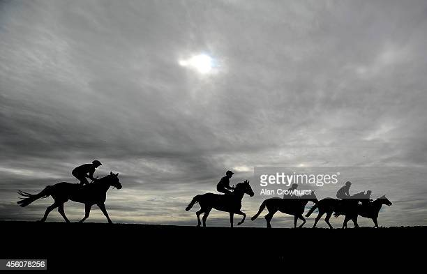 Runners return after pulling up at Newmarket racecourse on September 25 2014 in Newmarket England