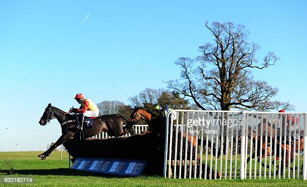 Runners take a flight during the Best Odds Guaranteed at 188Bet Chase at Chepstow Racecourse on January 20 2017 in Chepstow Wales