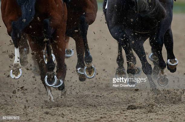 Runners take the bend at Chelmsford racecourse on April 16 2016 in Chelmsford England
