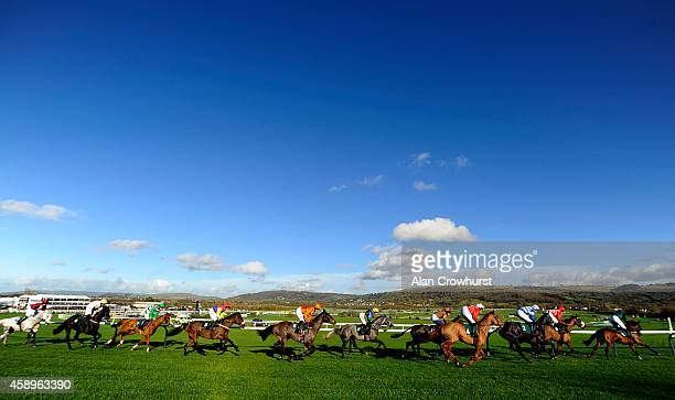 Runners turn into the back straight in The Opus Energy Amateur Riders' Handicap Steeple Chase at Cheltenham racecourse on November 14, 2014 in...