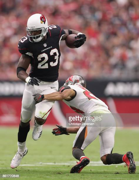 Running back Adrian Peterson of the Arizona Cardinals rushes the football against cornerback Brent Grimes of the Tampa Bay Buccaneers during the...