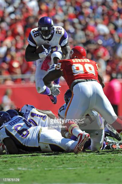 Running back Adrian Peterson of the Minnesota Vikings leaps into the air against pressure from defensive linemen Amon Gordon of the Kansas City...