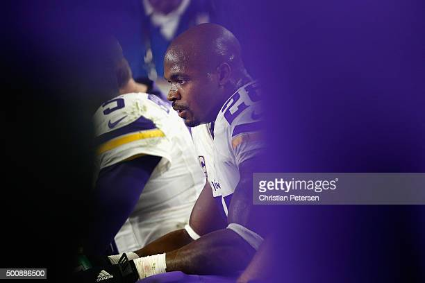 Running back Adrian Peterson of the Minnesota Vikings sits on the bench during the fourth quarter of the NFL game against the Arizona Cardinals at...