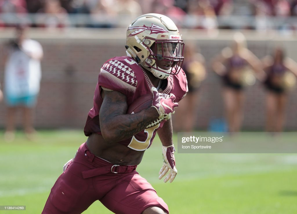 COLLEGE FOOTBALL: APR 06 Florida State Spring Game : News Photo