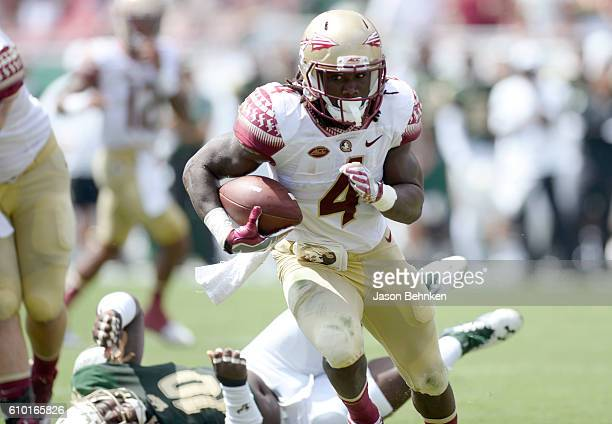 Running back Dalvin Cook of the Florida State Seminoles heads to the end zone for a touchdown against the South Florida Bulls during the 1st quarter...