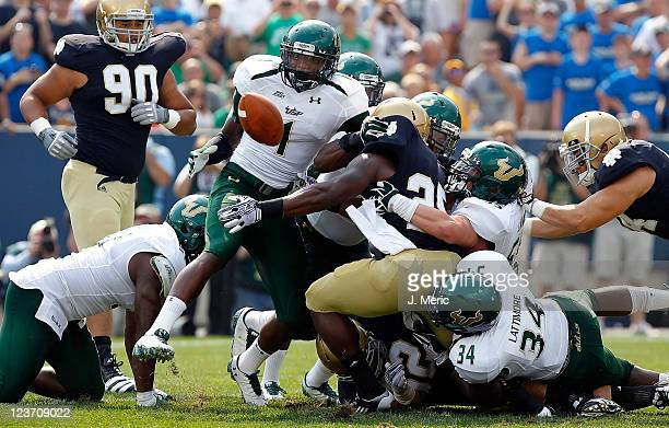 Running back Jonas Gray of the Notre Dame Fighting Irish fumbles against the South Florida Bulls during the game at Notre Dame Stadium on September 3...