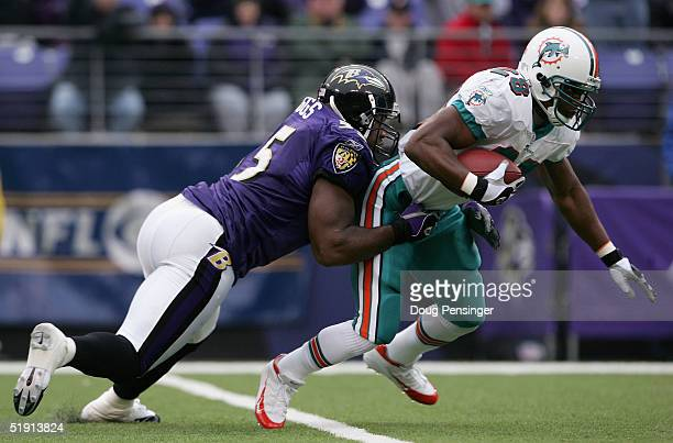 Running back Travis Minor of the Miami Dolphins tries to shake Terrell Suggs of the Baltimore Ravens as the Ravens defeated the Miami Dolphins 30-23...