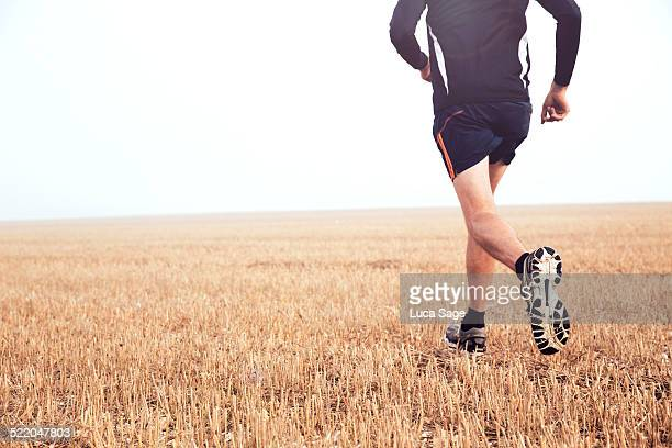 Running free in the countryside