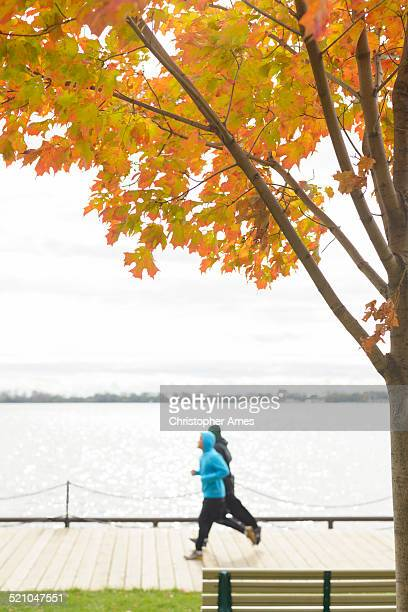 Running in City Park With Trees and Lake in Autumn/Fall