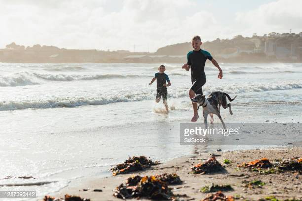 running in the sea - vacations stock pictures, royalty-free photos & images