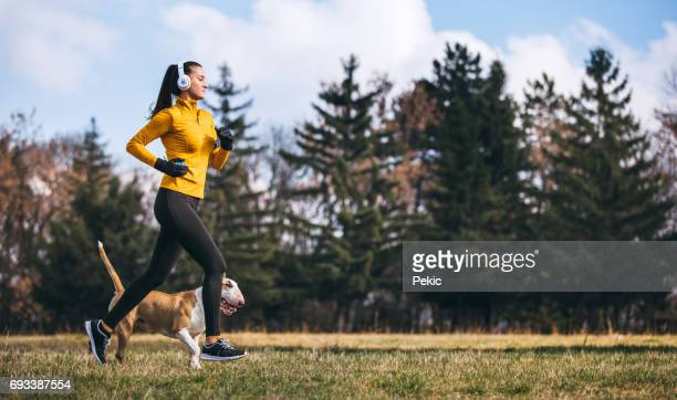 running is better with a friend - autumn dog stock pictures, royalty-free photos & images