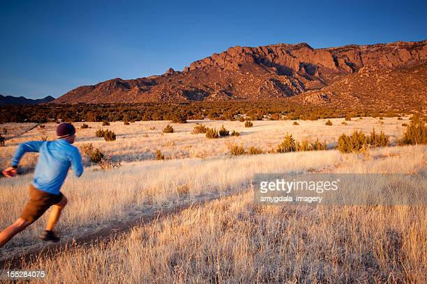 running motion - western juniper tree stock pictures, royalty-free photos & images