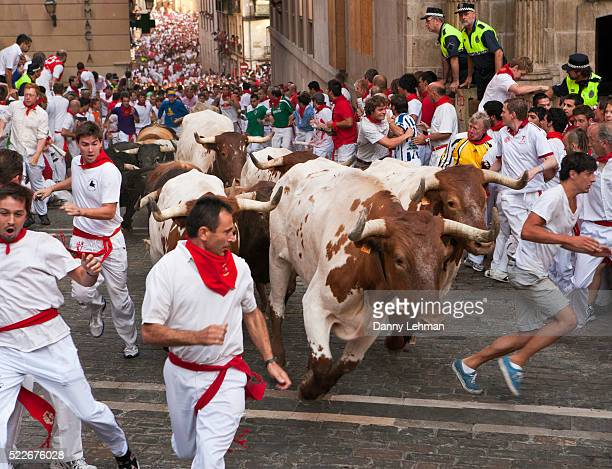 Running of the Bulls during Festival of San Fermin in Pamplona