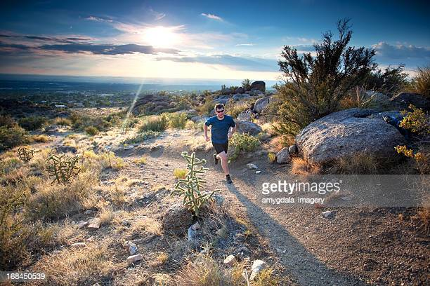 running! - sonoran desert stock pictures, royalty-free photos & images