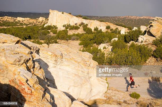 running! - western juniper tree stock pictures, royalty-free photos & images