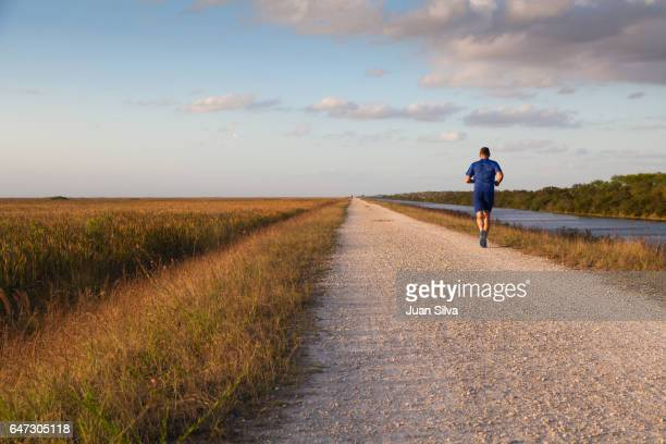running - coral springs stock pictures, royalty-free photos & images