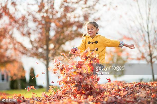 running through a pile of leaves - punt kick stock pictures, royalty-free photos & images