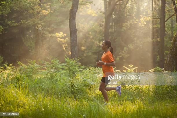 Läuft durch Wald am Morgen