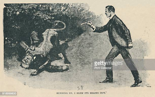 Running Up I Blew Its Brains Out' 1892 Illustration from 'The Adventure of the Copper Beeches' by Arthur Conan Doyle From The Strand Magazine An...