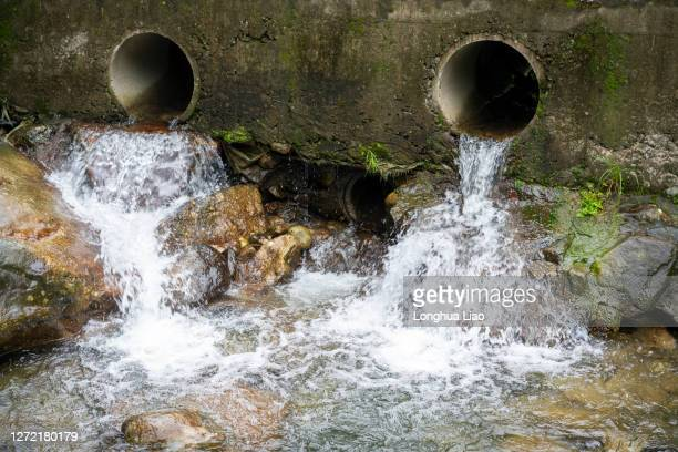 running water from culvert - greenpeace stock pictures, royalty-free photos & images