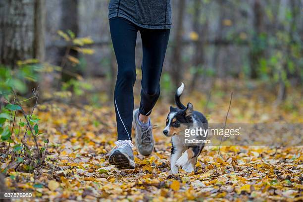 Running with a Puppy
