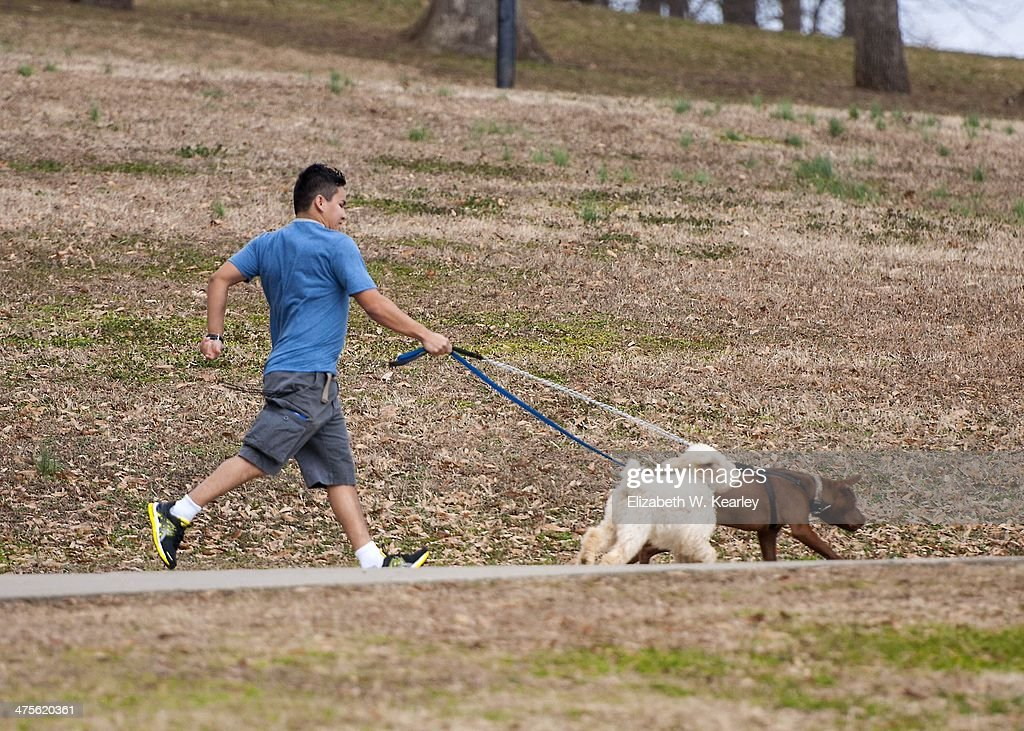 Walking the Dog : News Photo