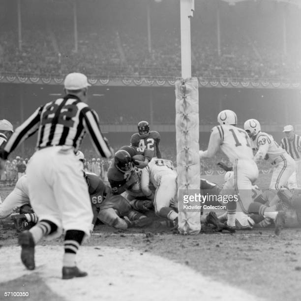 Runningback Alex Webster of the New York Giants crosses the goal line to score a touchdown for the Giants during the fourth quarter of the NFL...