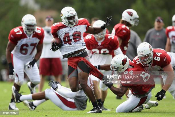 Runningback Alfonso Smith of the Arizona Cardinals has his shorts torn off by linebacker Quan Sturdivant while rushing the football in the team...