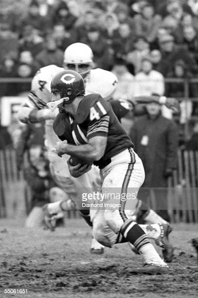 Runningback Brian Piccolo of the Chicago Bears runs the ball during a game on November 19 1967 against the St Louis Cardinals at Soldier Field in...