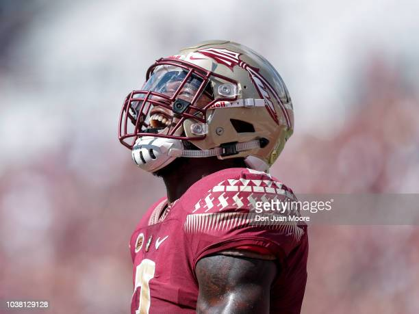 Runningback Cam Akers of the Florida State Seminoles celebrates after running in for a score during the game against the Northern Illinois Huskies at...