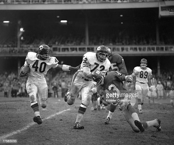 Runningback Gale Sayers of the Chicago Bears runs with the ball as guard James Cadile blocks Carl 'Spider' Lockhart of the New York Giants during a...