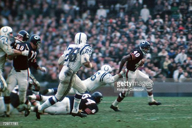Runningback Gale Sayers of the Chicago Bears tries to break a tackle during a game on December 5 1965 against the Baltimore Colts at Memorial Stadium...