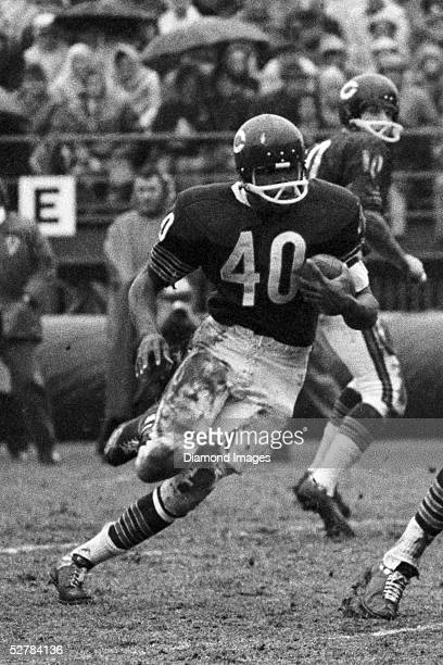Runningback Gale Sayers#40 of the Chicago Bears looks for running room during a game on November 27 1966 against the Atlanta Falcons in Chicago...