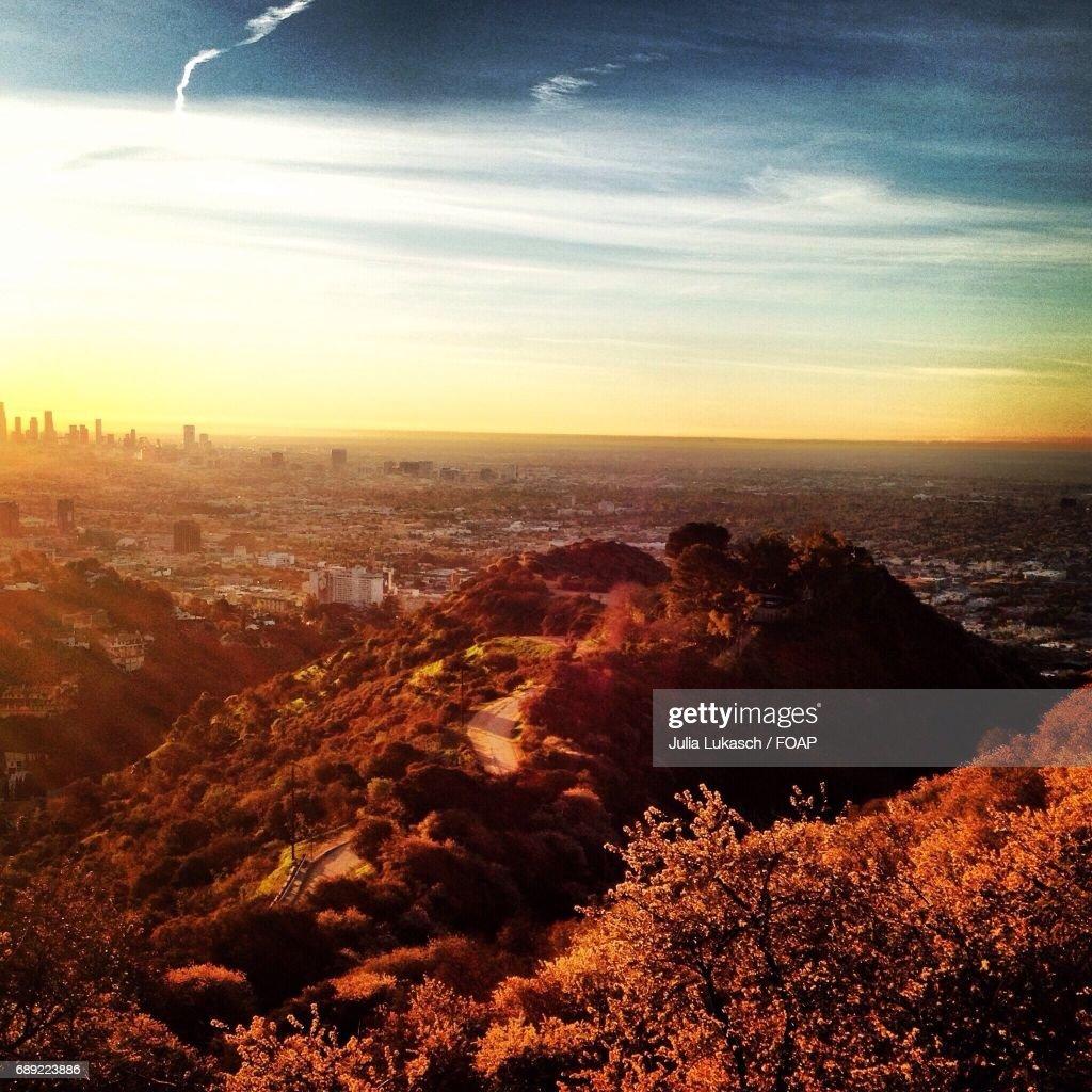 Runyon Canyon during sunset : Stock Photo