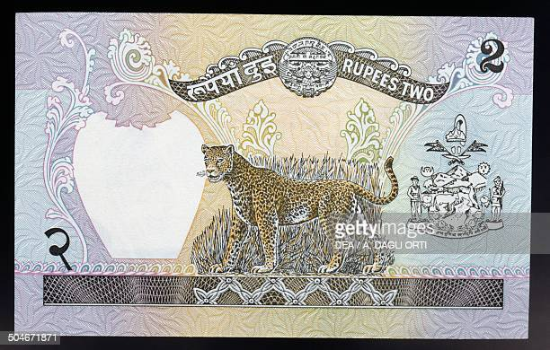 2 rupees banknote 19801989 reverse leopard Nepal 20th century