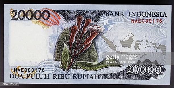 20000 rupiah banknote reverse cloves flowers and map of Indonesian Archipelago Indonesia 20th century