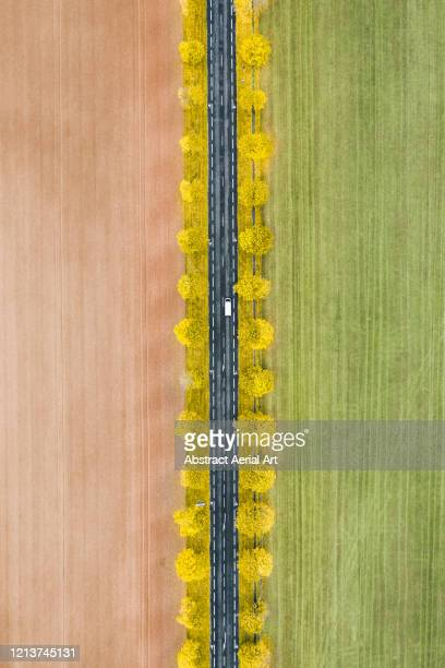 rural autumn scene photographed from above, france - striped stock pictures, royalty-free photos & images