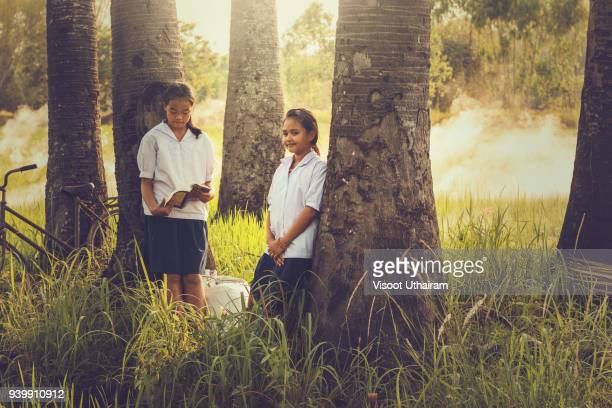 Rural children are reading a book at a coconut garden.