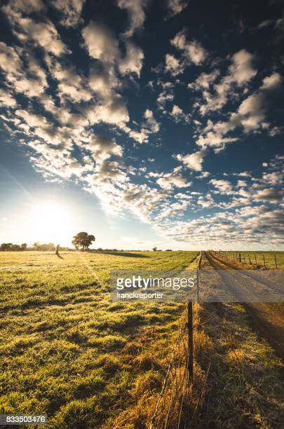 rural countryside in new south wales - traditional windmill stock photos and pictures
