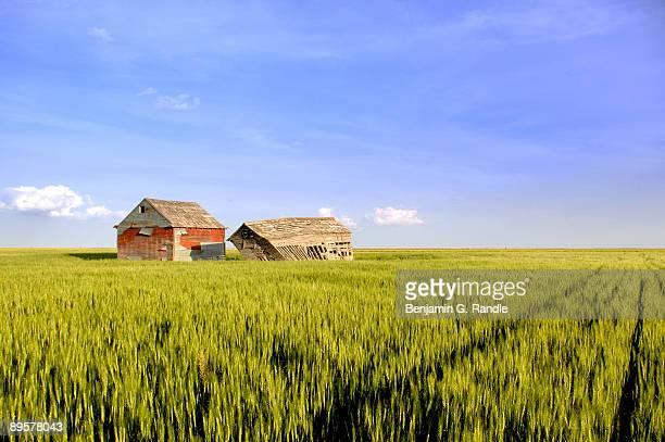rural decay - オクラホマ州 ストックフォトと画像